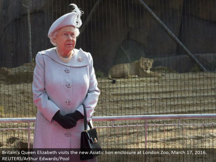 Britain's Queen Elizabeth visits the new Asiatic lion fenced in area at London Zoo, March 17, 2016. REUTERS/Arthur Edwards/Pool