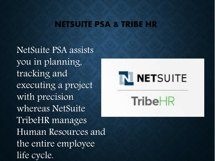 NETSUITE PSA & TRIBE HR