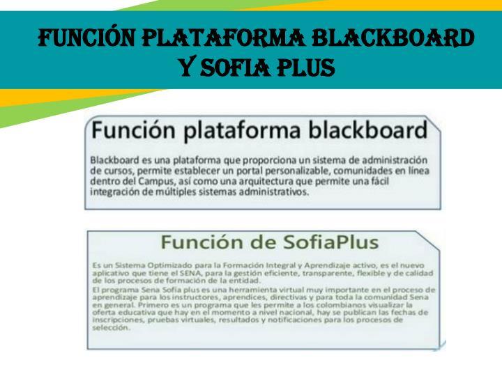 Función plataforma blackboard y sofia plus