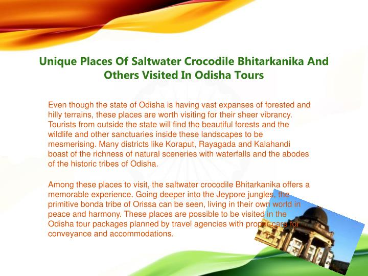 Unique Places Of Saltwater Crocodile Bhitarkanika And Others Visited In Odisha Tours