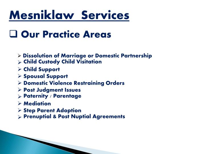 Mesniklaw  Services