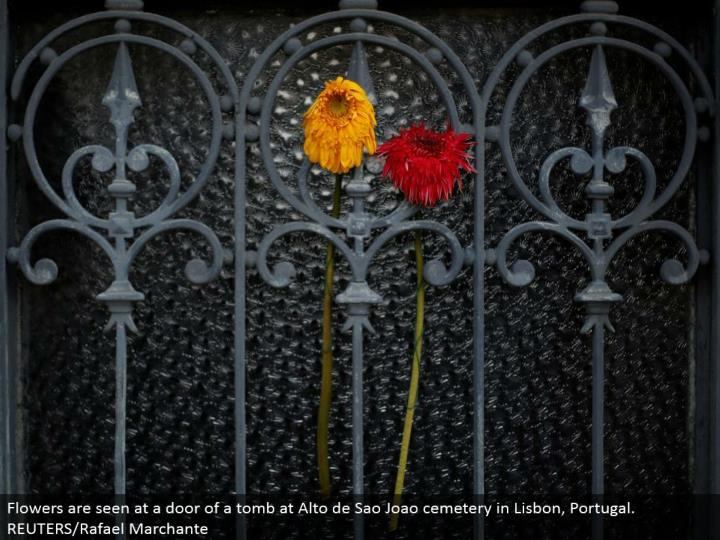 Flowers are seen at an entryway of a tomb at Alto de Sao Joao graveyard in Lisbon, Portugal. REUTERS/Rafael Marchante