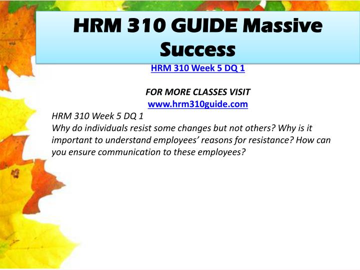HRM 310 GUIDE Massive Success