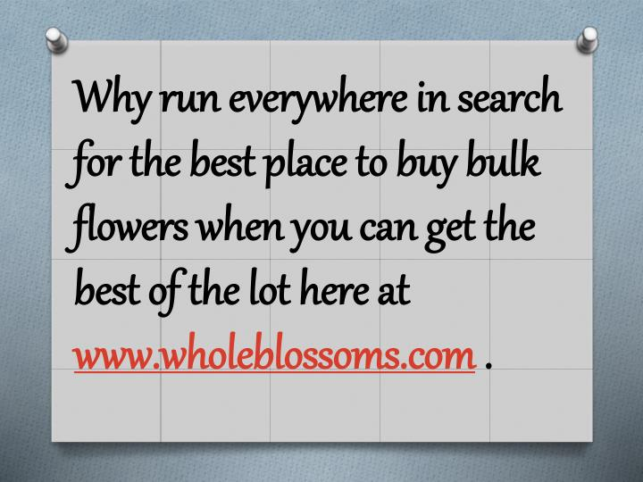 Why run everywhere in search for the best place to buy bulk flowers when you can get the best of the lot here at