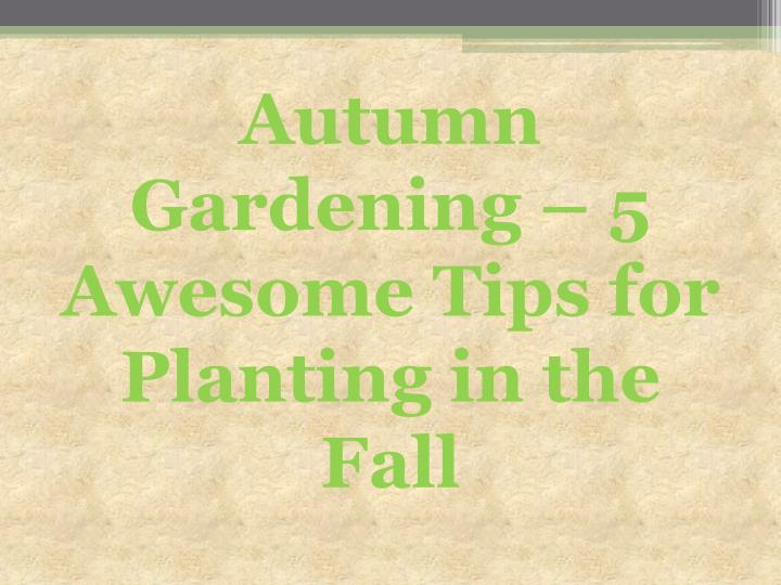 Autumn gardening 5 awesome tips for planting in the fall