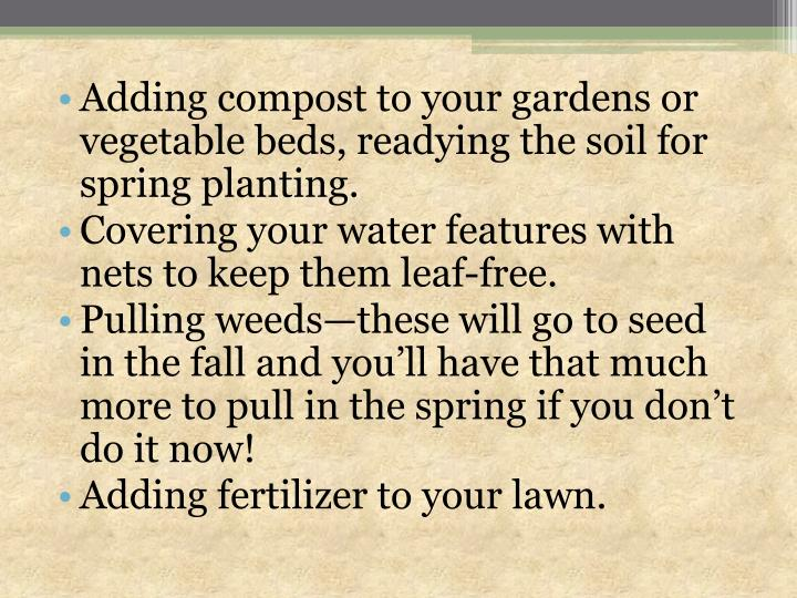 Adding compost to your gardens or vegetable beds, readying the soil for spring planting.