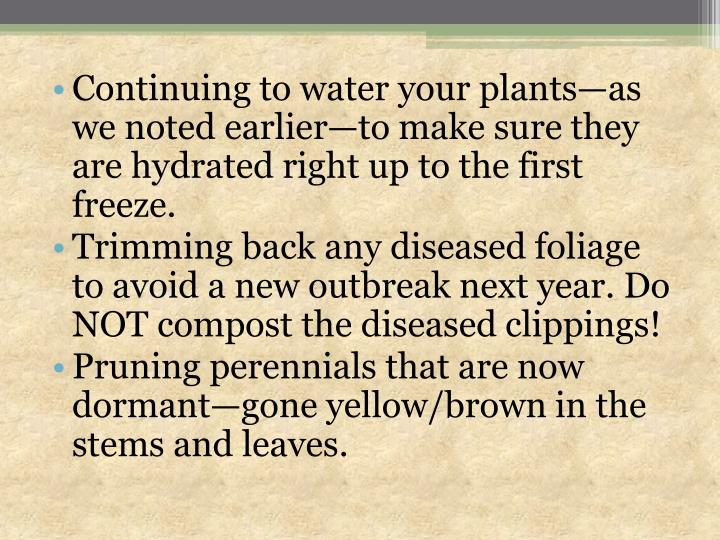 Continuing to water your plants—as we noted earlier—to make sure they are hydrated right up to the first freeze.