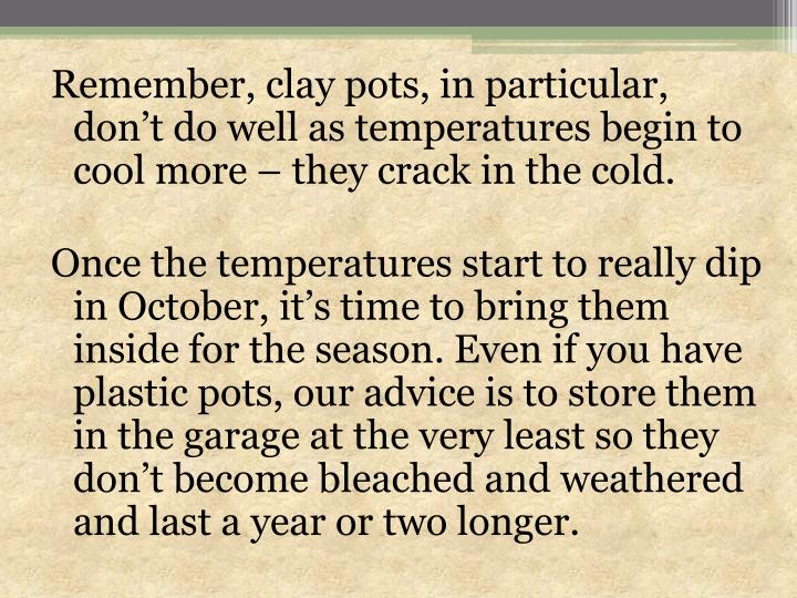 Remember, clay pots, in particular, don't do well as temperatures begin to cool more – they crack in the cold