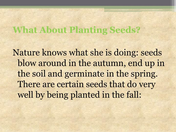 What About Planting Seeds