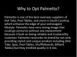 why to opt palmetto