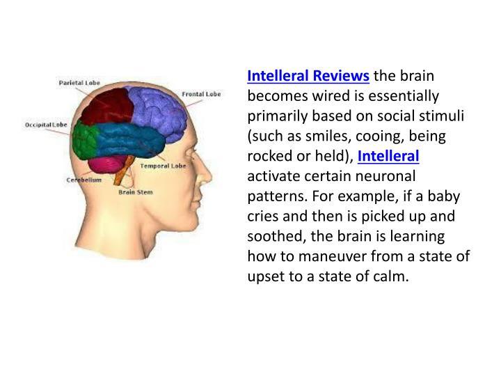 Intelleral Reviews