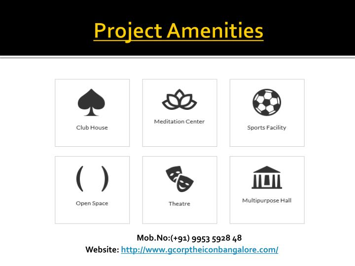 Project Amenities