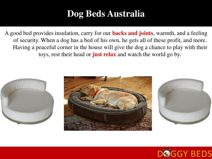 Dog Beds Australia