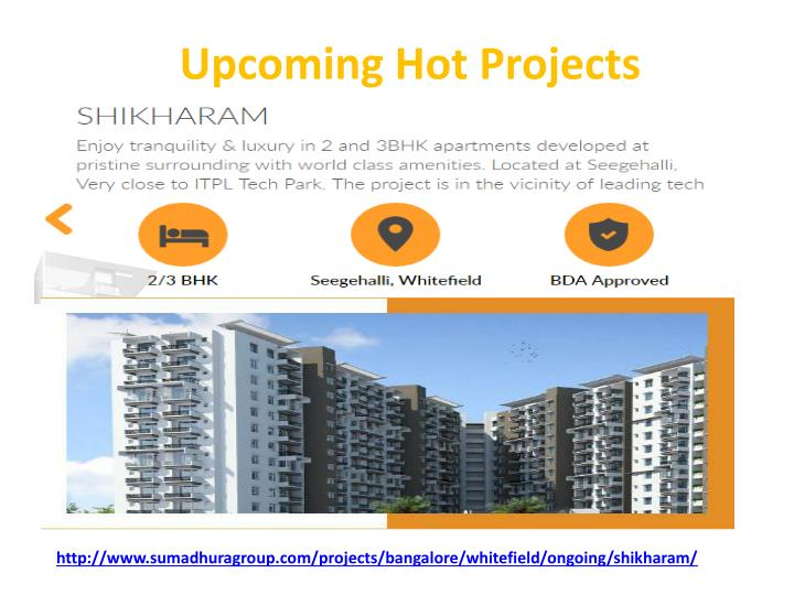 Upcoming Hot Projects