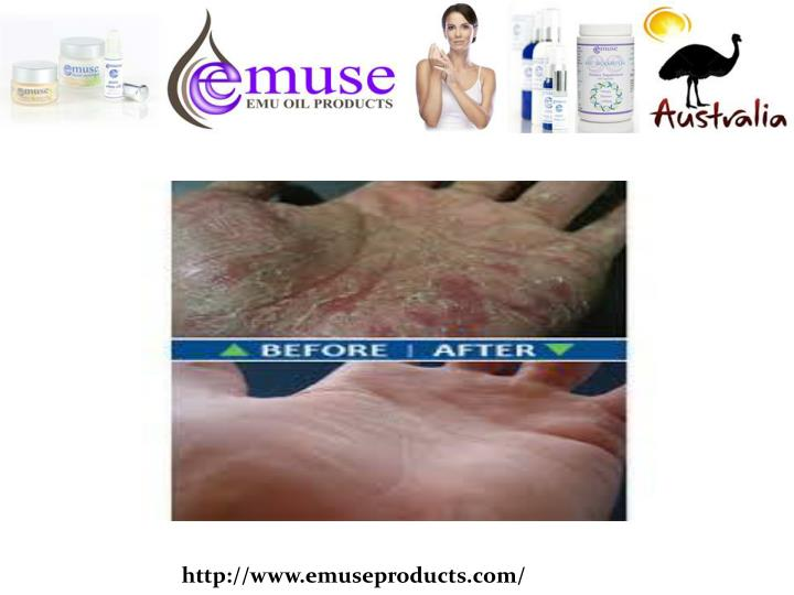 http://www.emuseproducts.com/