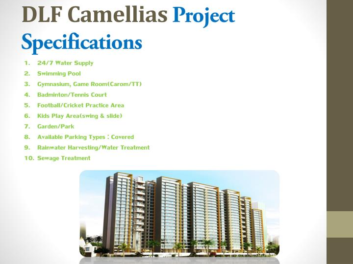 Dlf camellias project specifications