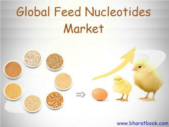 Discount on global feed nucleotides market