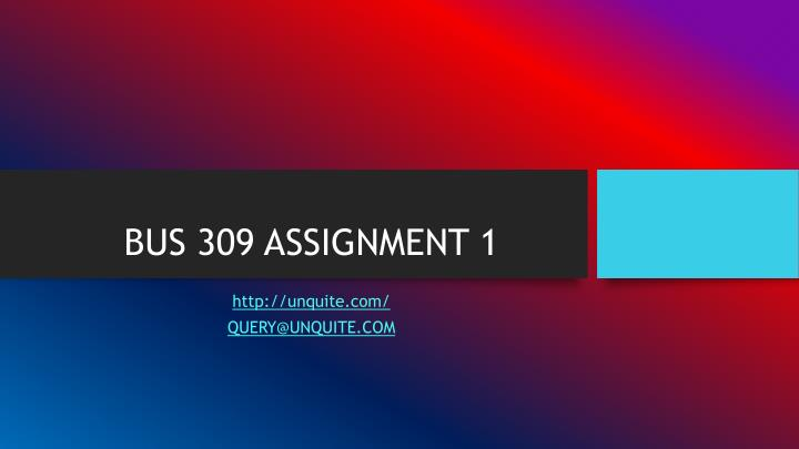 Bus 309 assignment 1