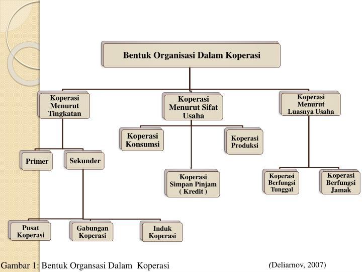 Gambar 1: Bentuk Organsasi Dalam  Koperasi