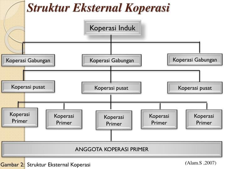 Struktur Eksternal Koperasi