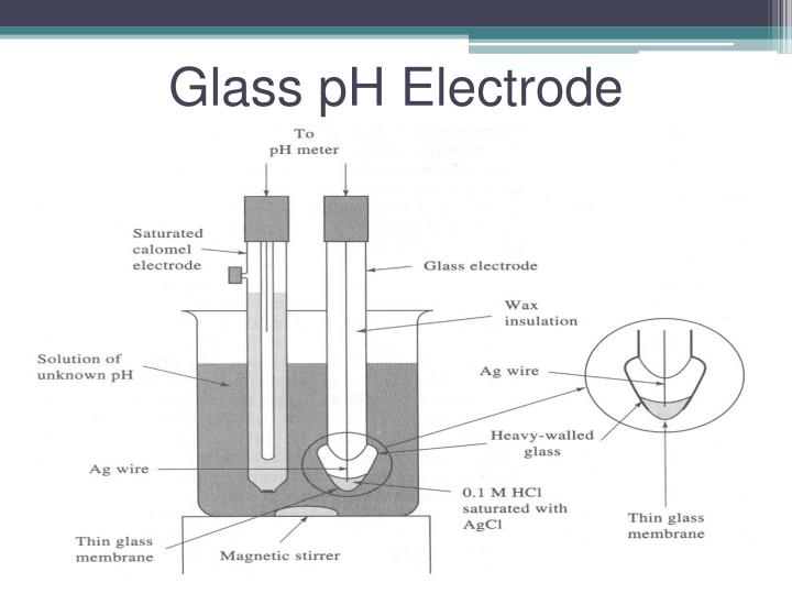 Glass pH Electrode