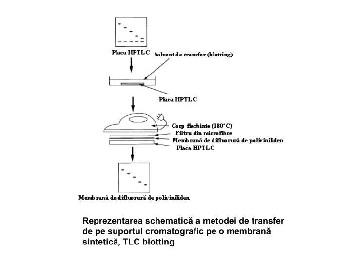 Reprezentarea schematică a metodei de transfer