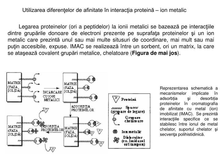 Utilizarea diferenţelor de afinitate în interacţia proteină –