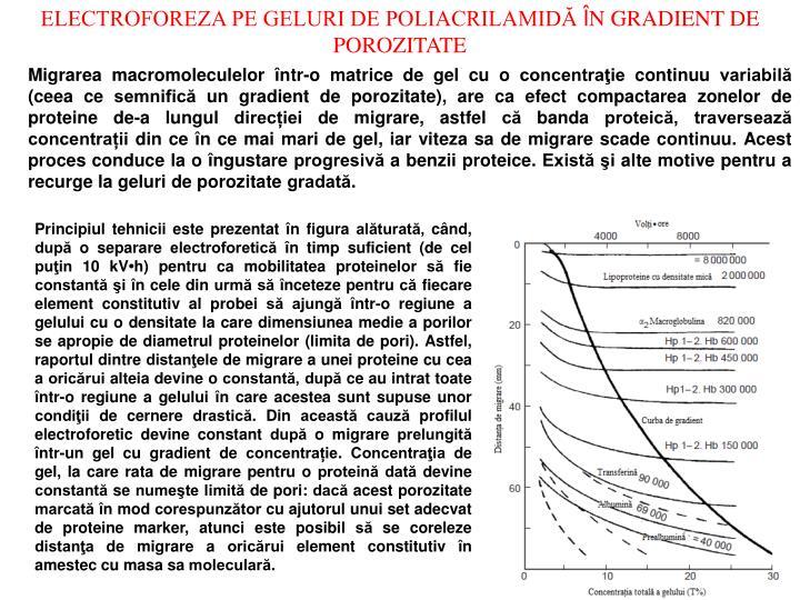 ELECTROFOREZA PE GELURI DE POLIACRILAMIDĂ