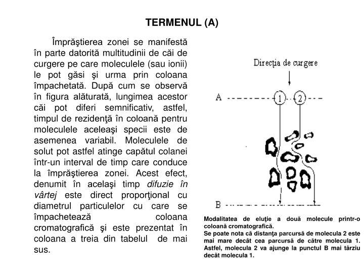 TERMENUL (A)