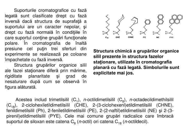 Suporturile cromatografice cu