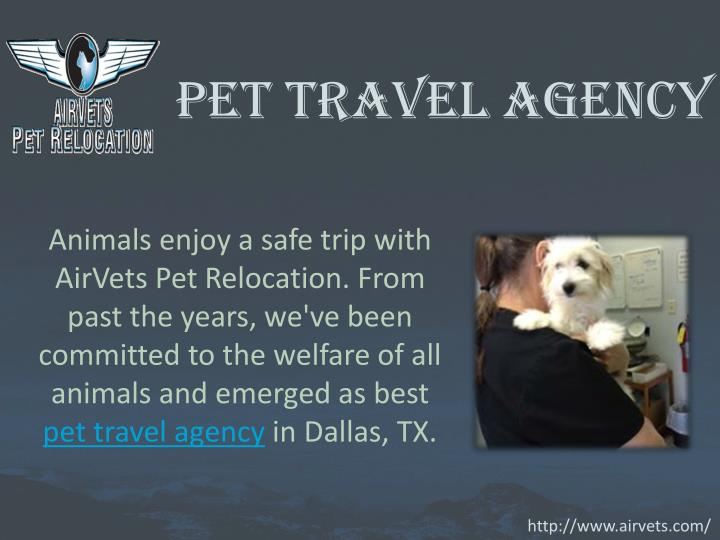 Pet travel agency