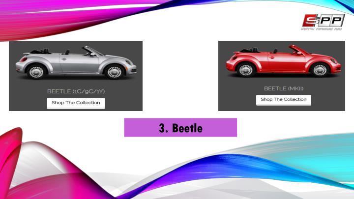 3. Beetle