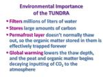 environmental importance of the tundra