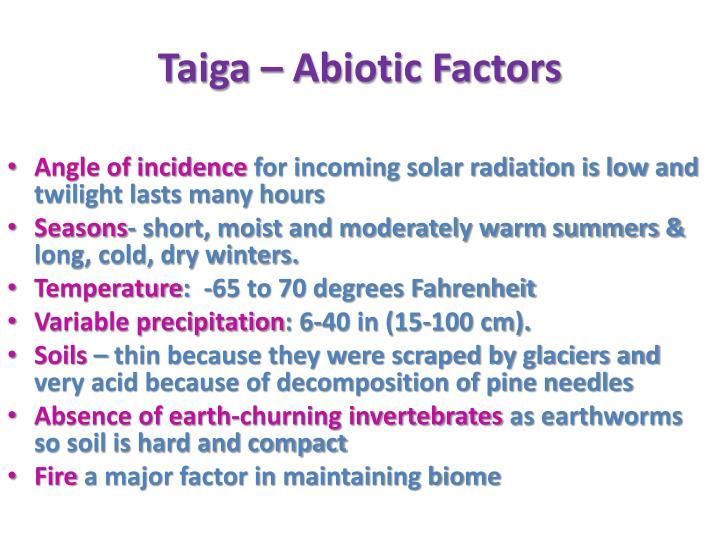 Taiga – Abiotic Factors