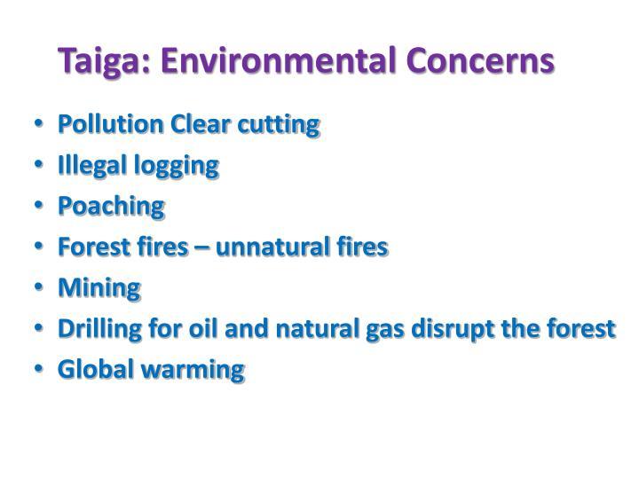 Taiga: Environmental Concerns