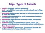 taiga types of animals
