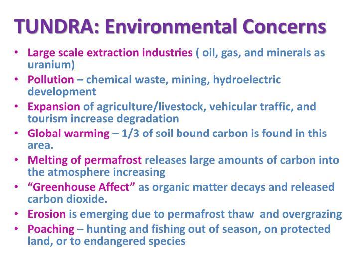 TUNDRA: Environmental Concerns