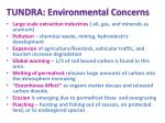 tundra environmental concerns