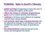 tundra role in earth s climate