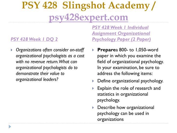 PSY 428  Slingshot Academy /