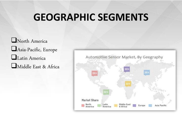 GEOGRAPHIC SEGMENTS