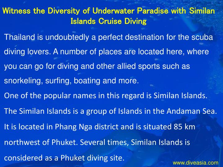 Witness the Diversity of Underwater Paradise with