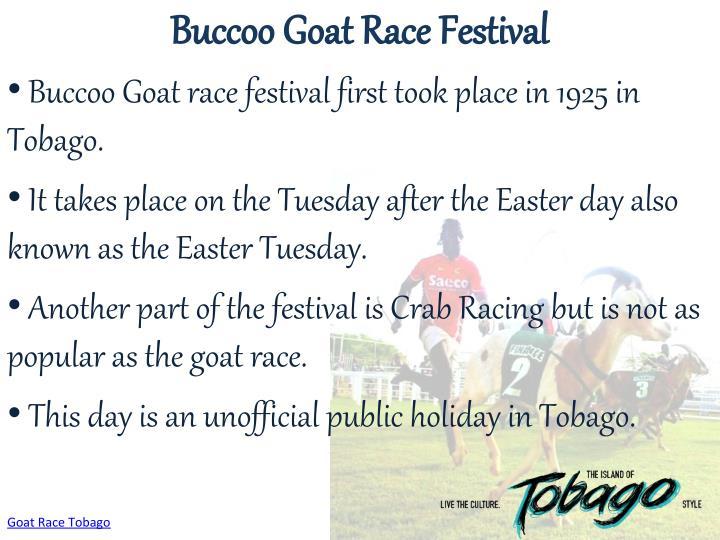 Buccoo Goat Race Festival