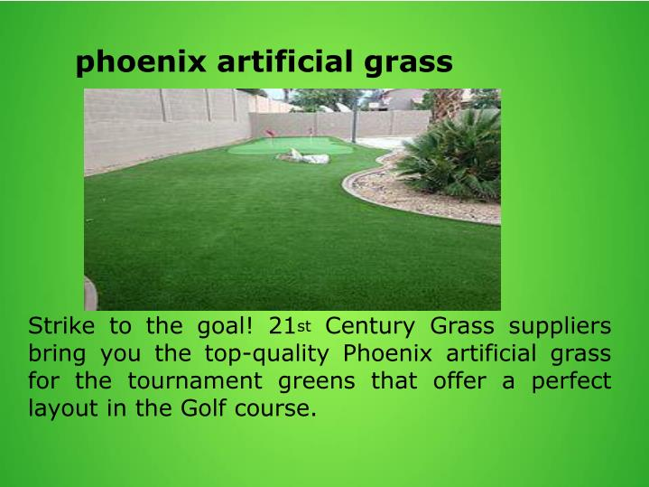 phoenix artificial grass
