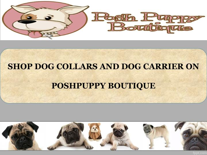 SHOP DOG COLLARS AND DOG CARRIER ON