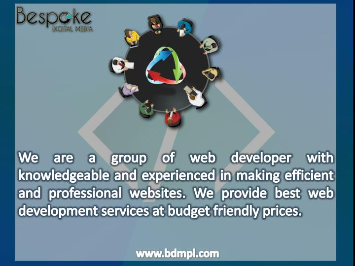 We are a group of web developer with knowledgeable and experienced in making efficient and professional websites. We provide best web development services at budget friendly prices.