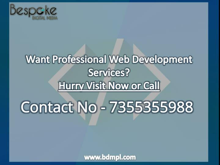 Want Professional Web Development Services?