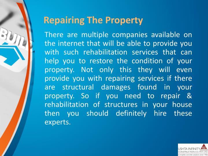 Repairing The Property