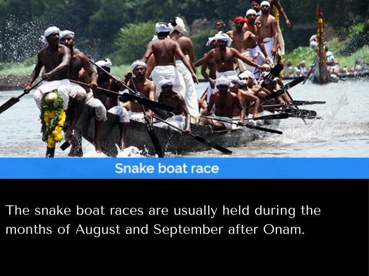 The snake boat races are usually held during the
