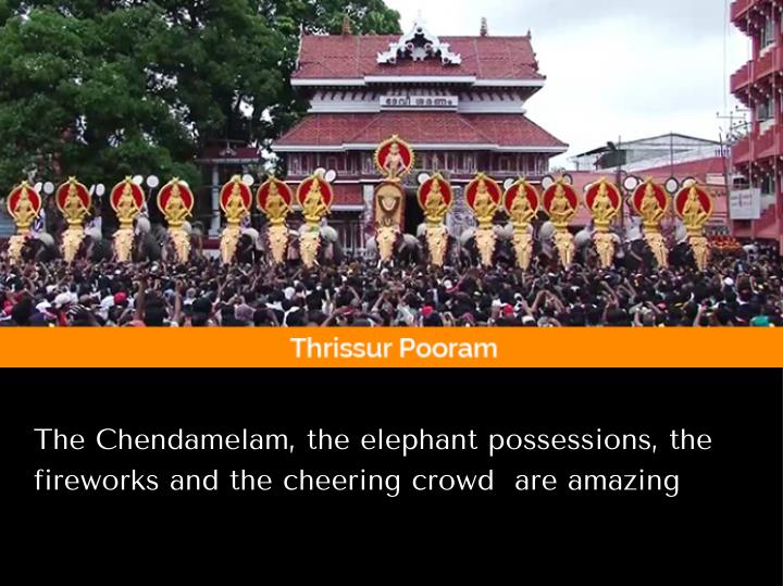 The Chendamelam, the elephant possessions, the